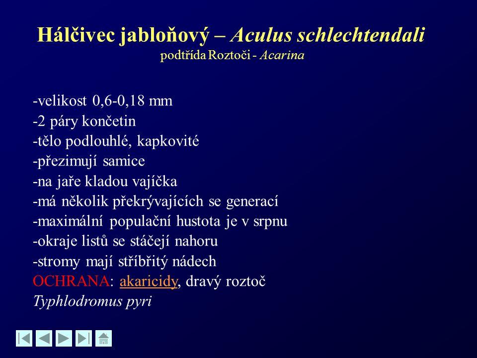 Hálčivec jabloňový – Aculus schlechtendali podtřída Roztoči - Acarina