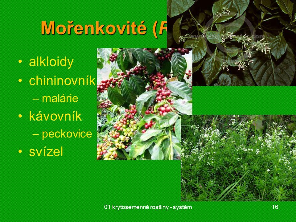 Mořenkovité (Rubiaceae)