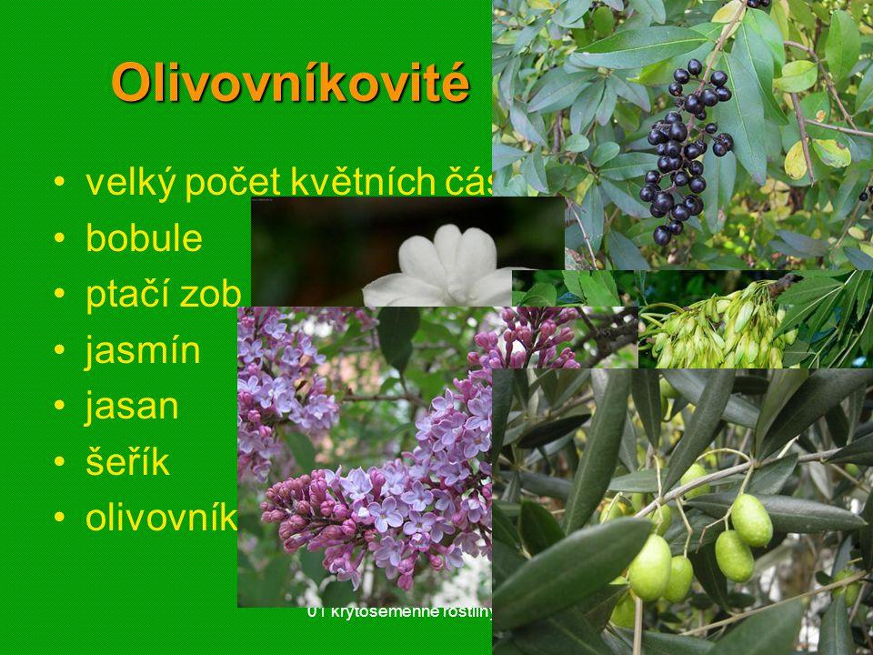 Olivovníkovité (Oleaceae)