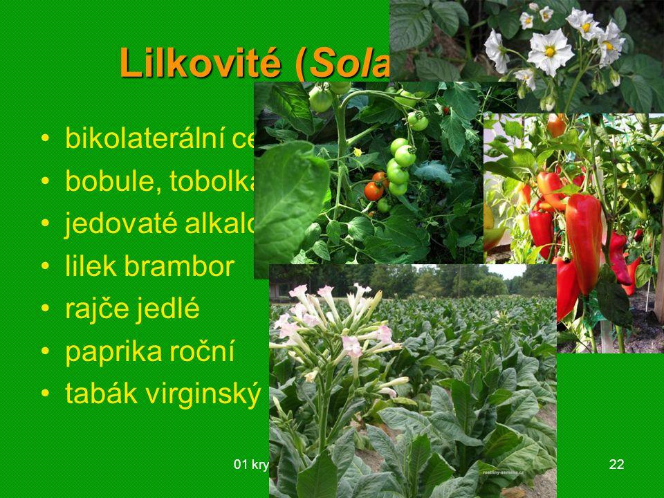Lilkovité (Solanaceae)