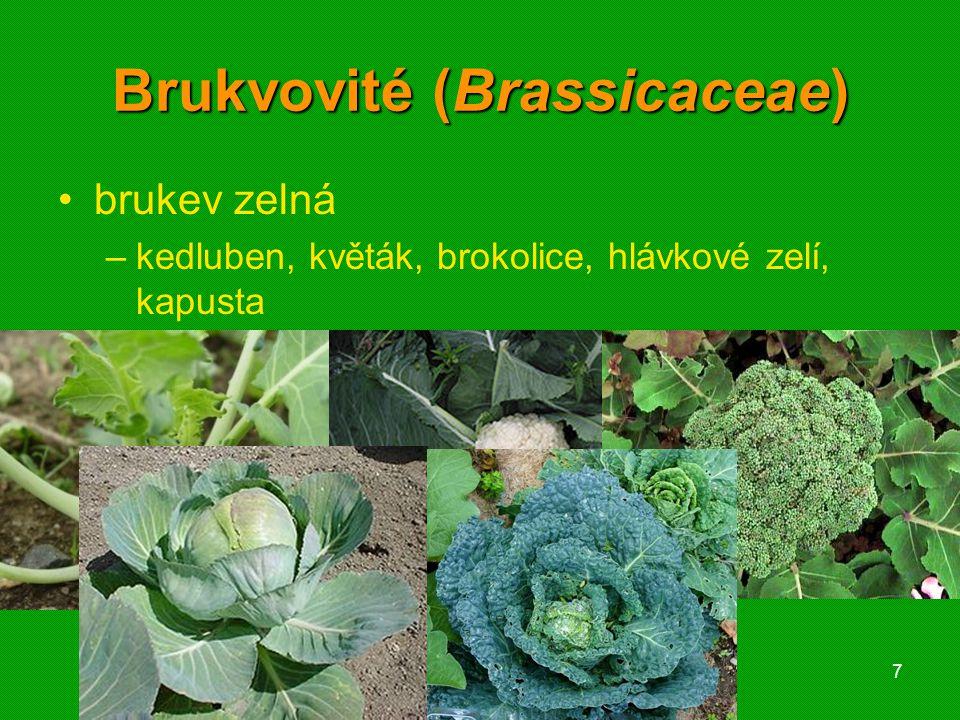 Brukvovité (Brassicaceae)