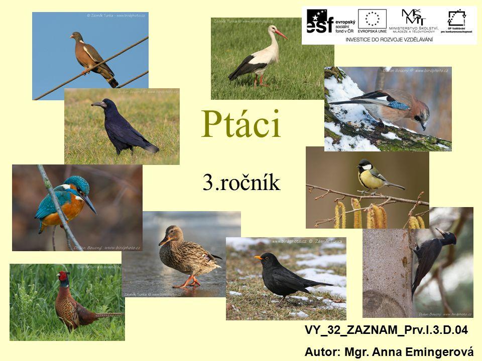 Ptáci 3.ročník VY_32_ZAZNAM_Prv.I.3.D.04 Autor: Mgr. Anna Emingerová
