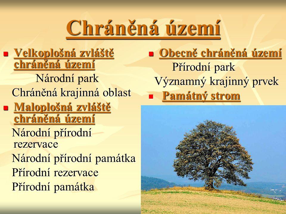 Chráněná území Velkoplošná zvláště chráněná území Národní park