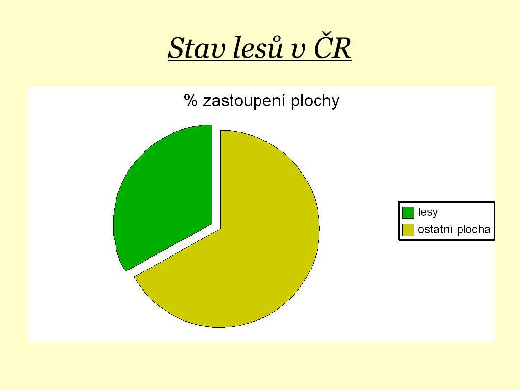 Stav lesů v ČR 1. rozloha