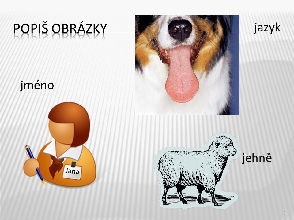 Popiš obrázky jazyk jméno jehně Jana