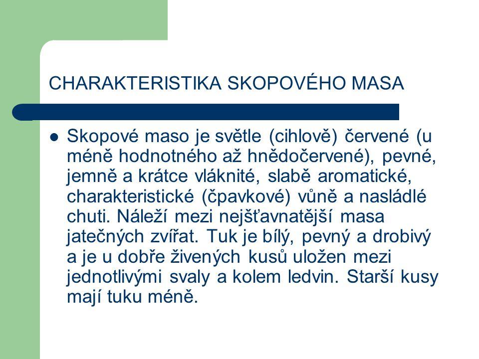 CHARAKTERISTIKA SKOPOVÉHO MASA