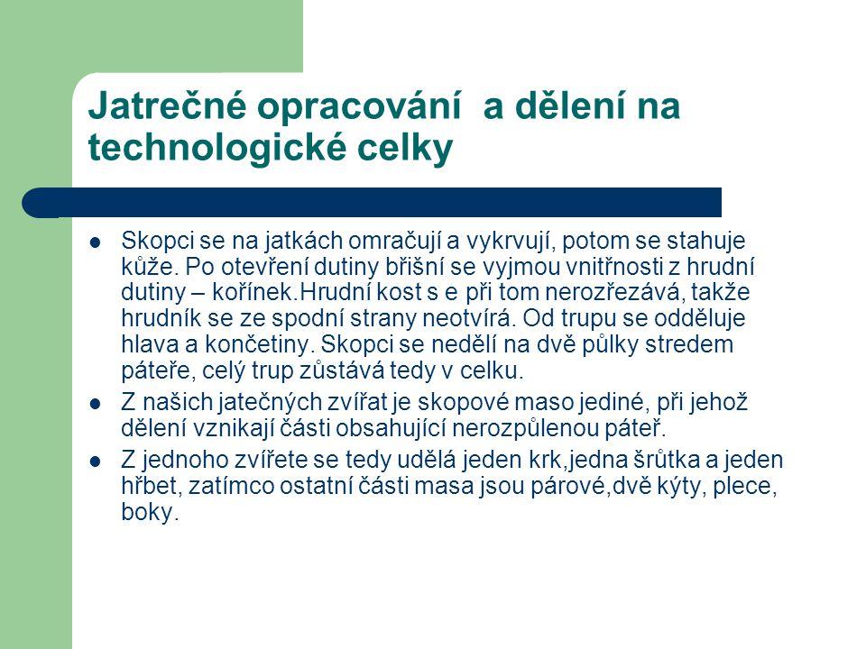 Jatrečné opracování a dělení na technologické celky