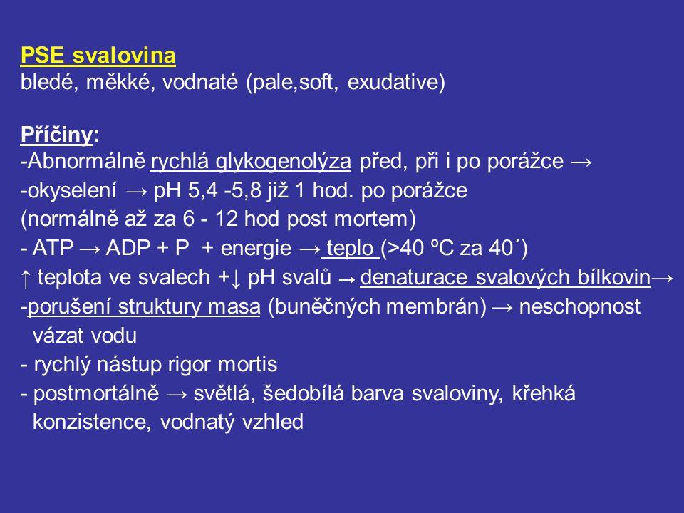 PSE svalovina bledé, měkké, vodnaté (pale,soft, exudative) Příčiny: