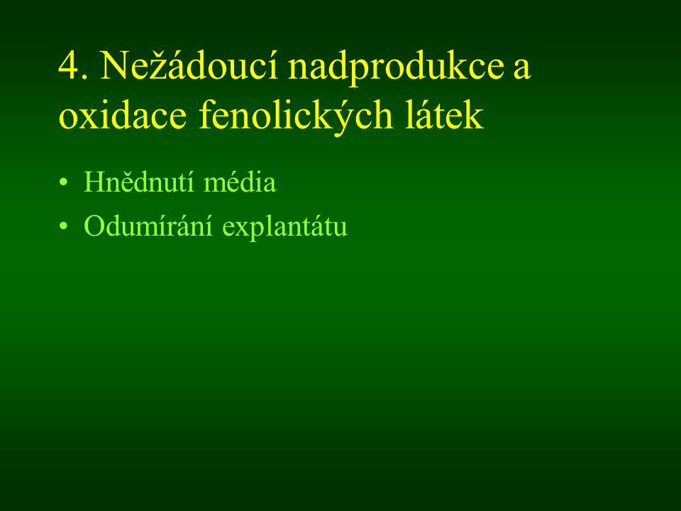 4. Nežádoucí nadprodukce a oxidace fenolických látek