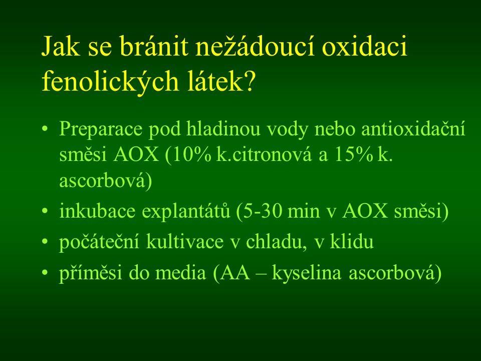 Jak se bránit nežádoucí oxidaci fenolických látek