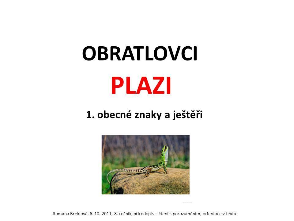 PLAZI OBRATLOVCI 1. obecné znaky a ještěři