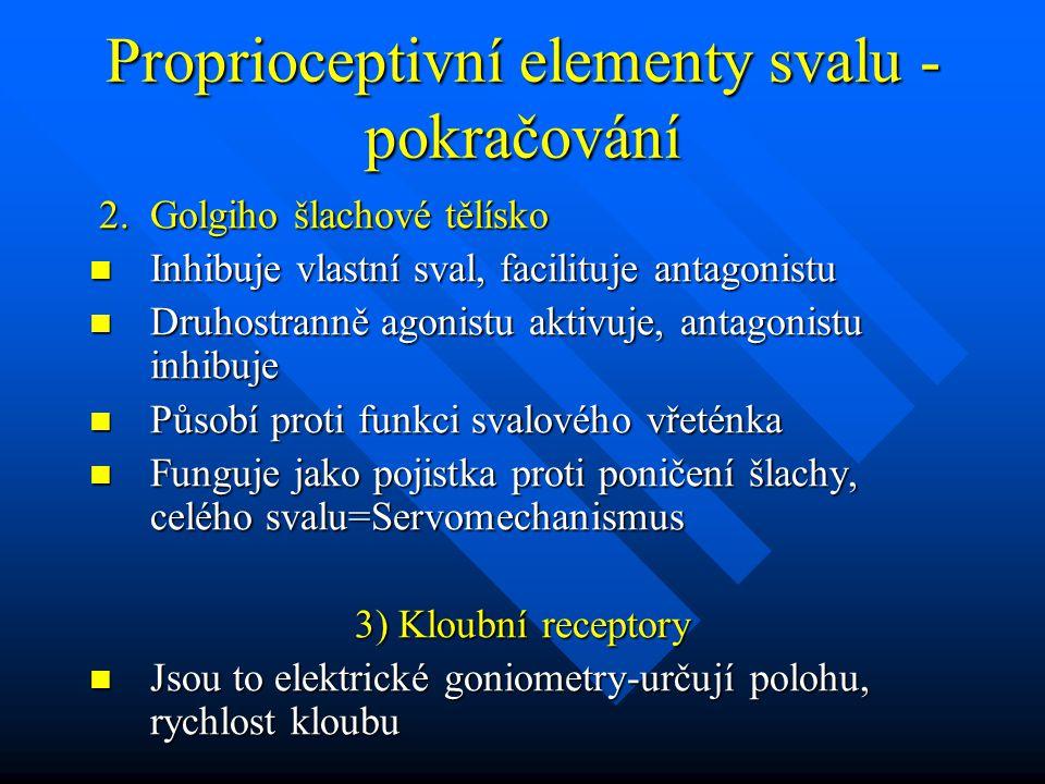 Proprioceptivní elementy svalu -pokračování