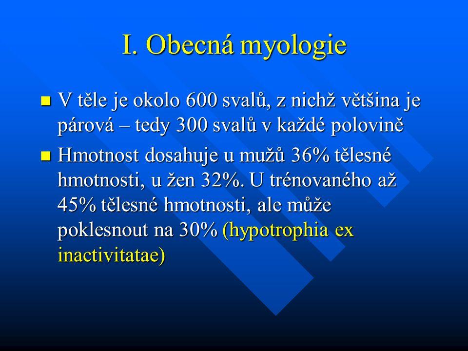 I. Obecná myologie V těle je okolo 600 svalů, z nichž většina je párová – tedy 300 svalů v každé polovině.