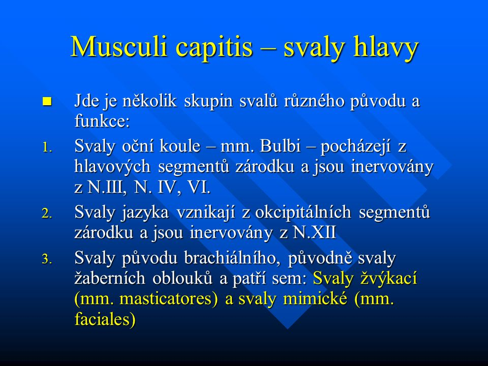 Musculi capitis – svaly hlavy