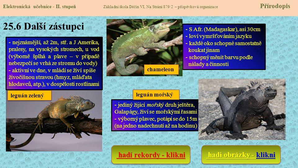 25.6 Další zástupci hadí rekordy - klikni hadi obrázky - klikni