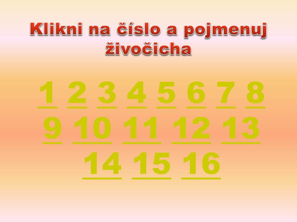Klikni na číslo a pojmenuj živočicha
