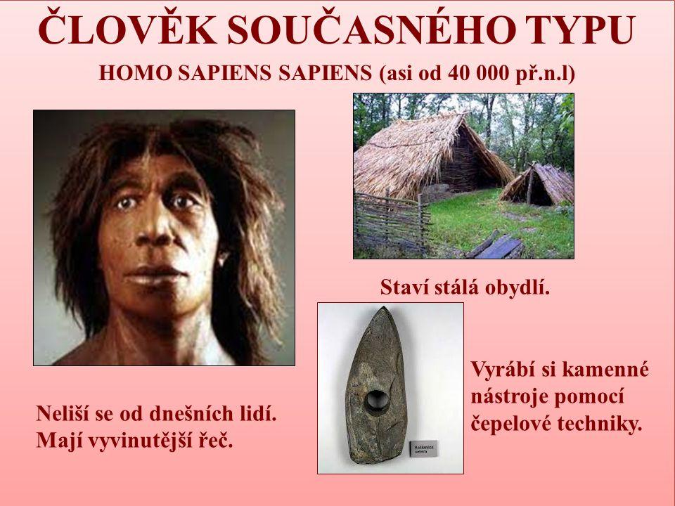 ČLOVĚK SOUČASNÉHO TYPU HOMO SAPIENS SAPIENS (asi od 40 000 př.n.l)