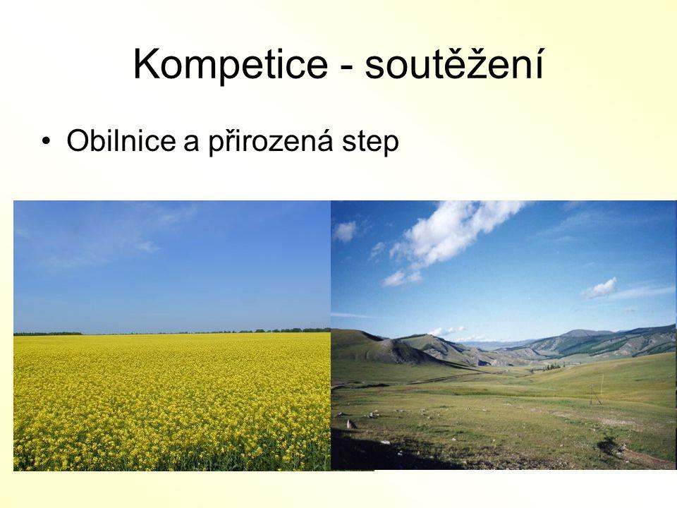 Kompetice - soutěžení Obilnice a přirozená step