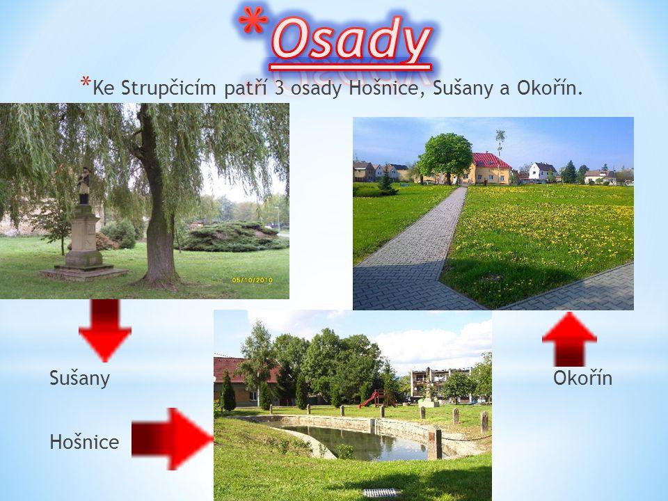 Ke Strupčicím patří 3 osady Hošnice, Sušany a Okořín.
