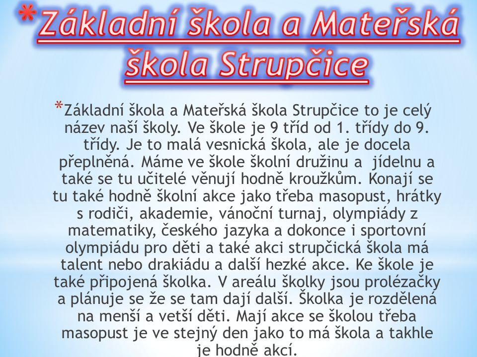 Základní škola a Mateřská škola Strupčice