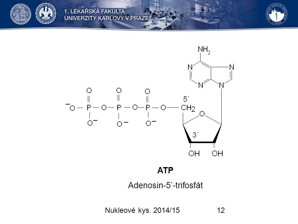 Adenosin-5'-trifosfát