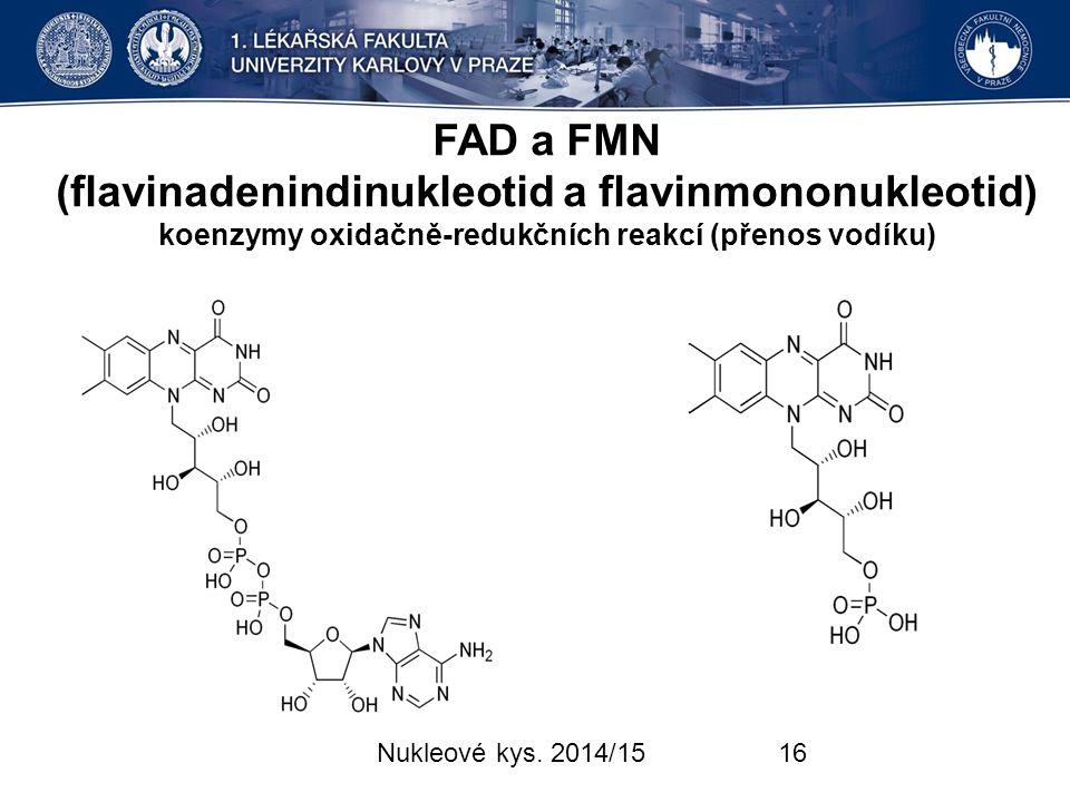FAD a FMN (flavinadenindinukleotid a flavinmononukleotid) koenzymy oxidačně-redukčních reakcí (přenos vodíku)