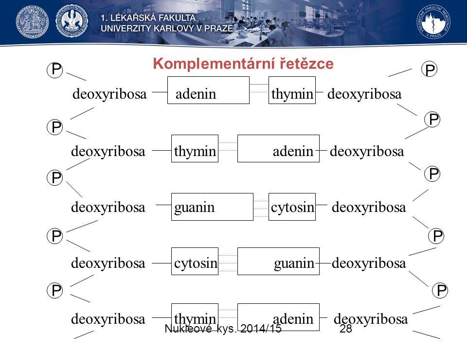 Komplementární řetězce