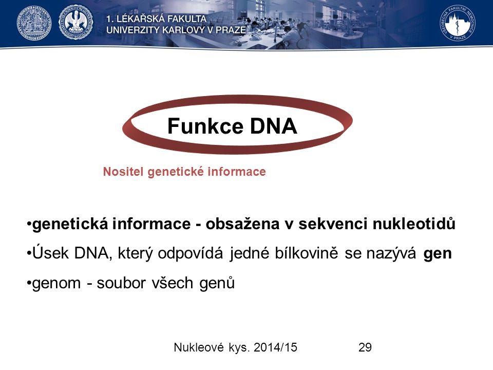 Funkce DNA genetická informace - obsažena v sekvenci nukleotidů