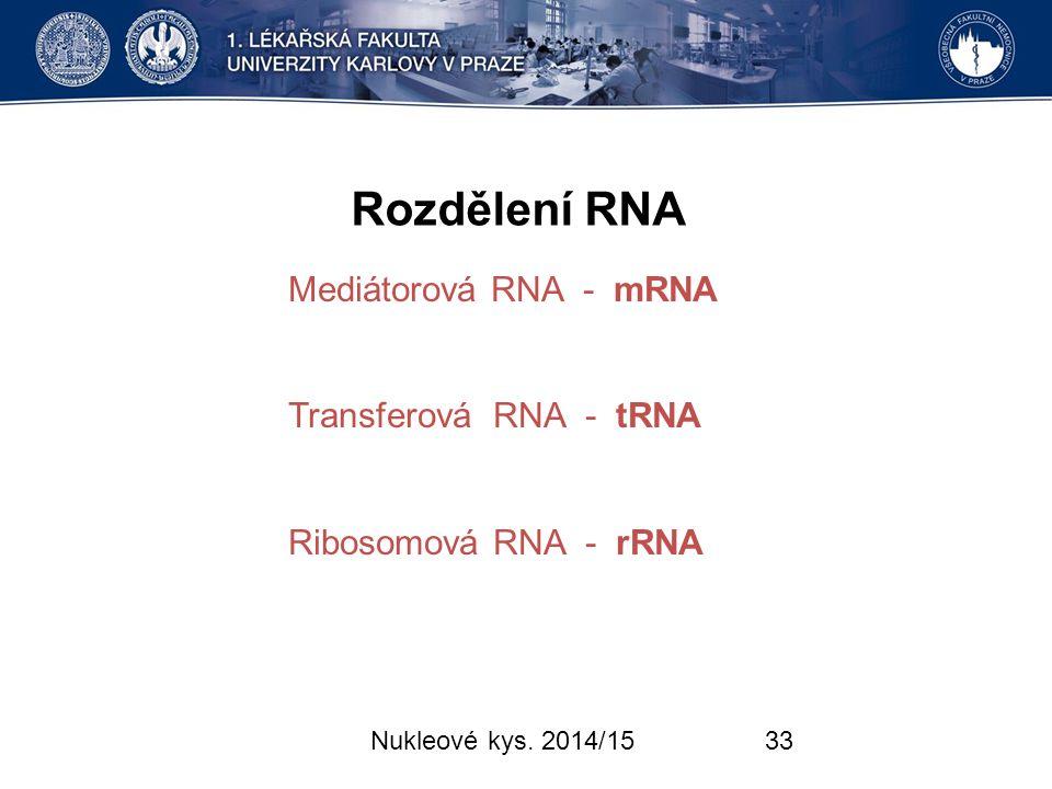 Rozdělení RNA Mediátorová RNA - mRNA Transferová RNA - tRNA