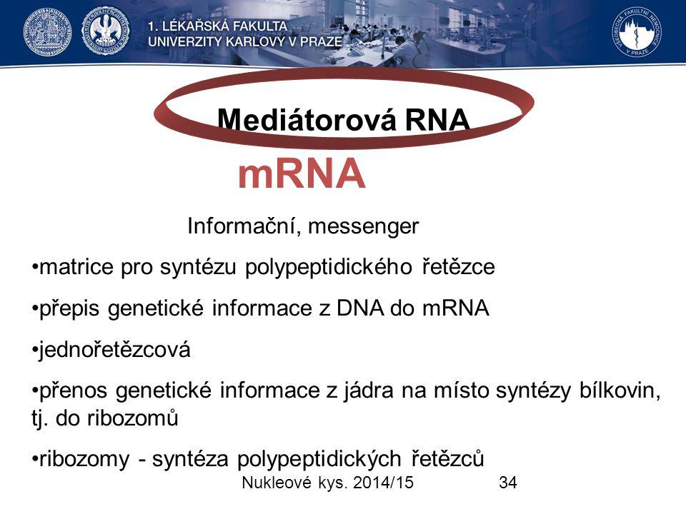 Mediátorová RNA mRNA Informační, messenger