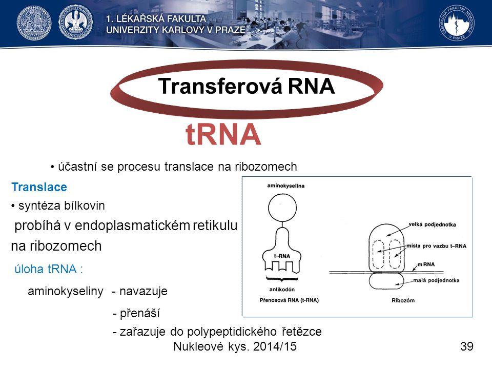 Transferová RNA tRNA na ribozomech