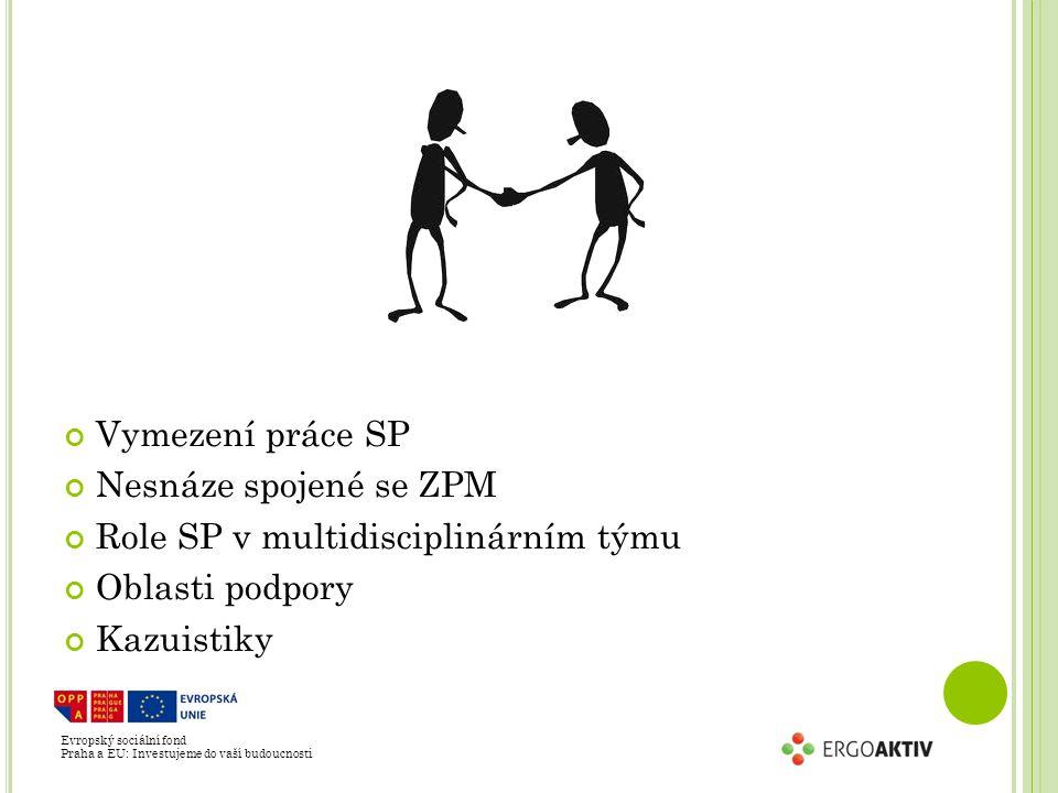 Role SP v multidisciplinárním týmu Oblasti podpory Kazuistiky