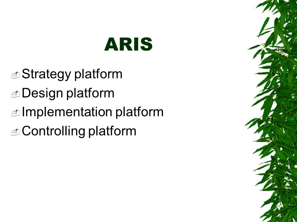 ARIS Strategy platform Design platform Implementation platform