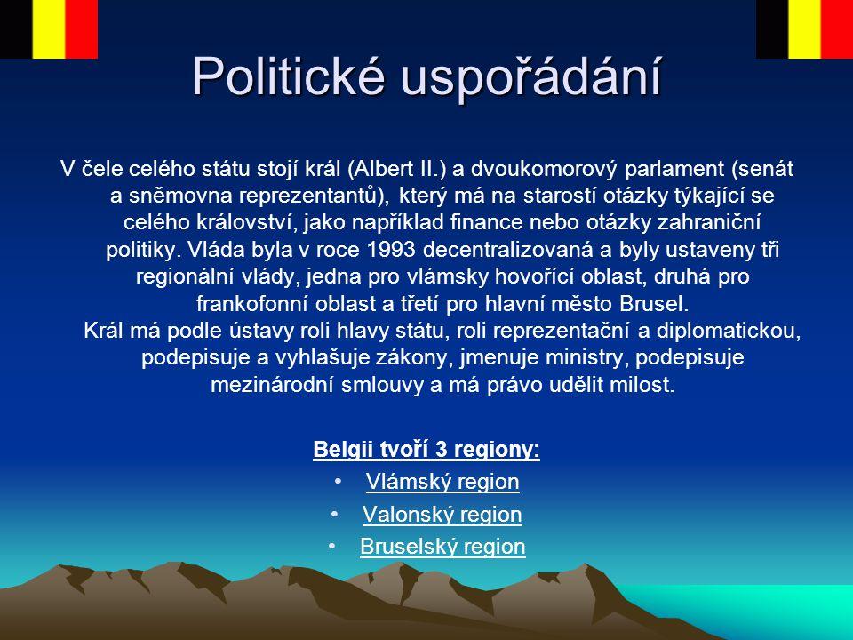 Politické uspořádání