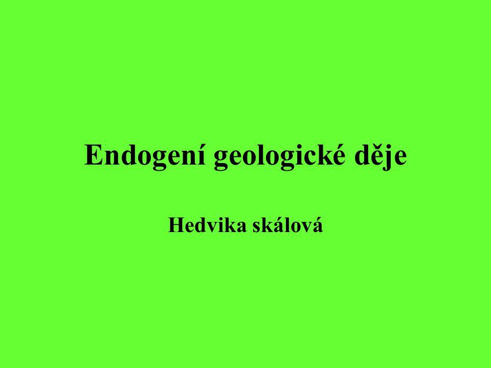 Endogení geologické děje