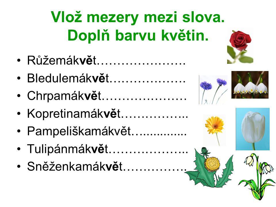 Vlož mezery mezi slova. Doplň barvu květin.