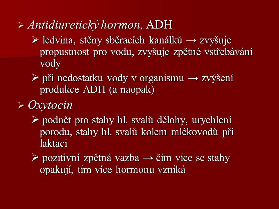 Antidiuretický hormon, ADH