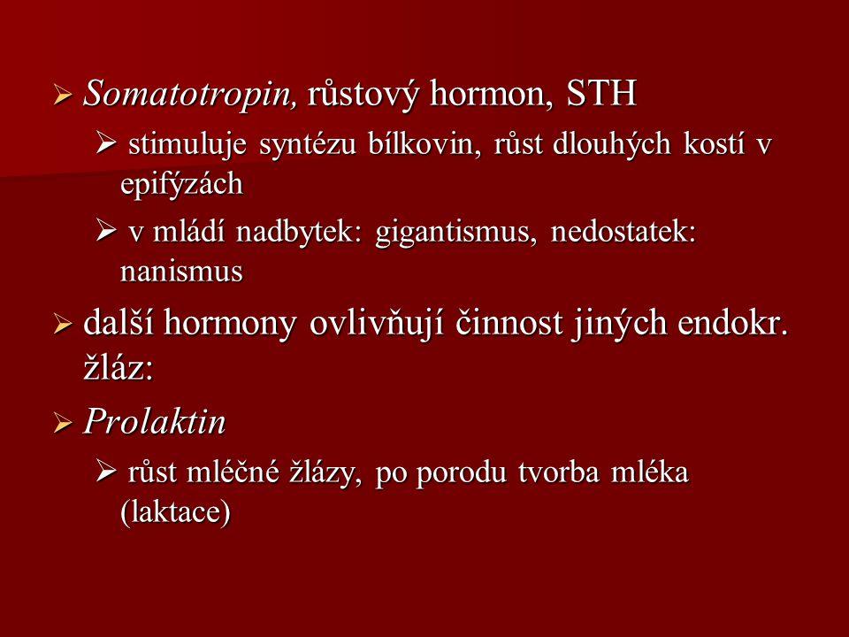 Somatotropin, růstový hormon, STH