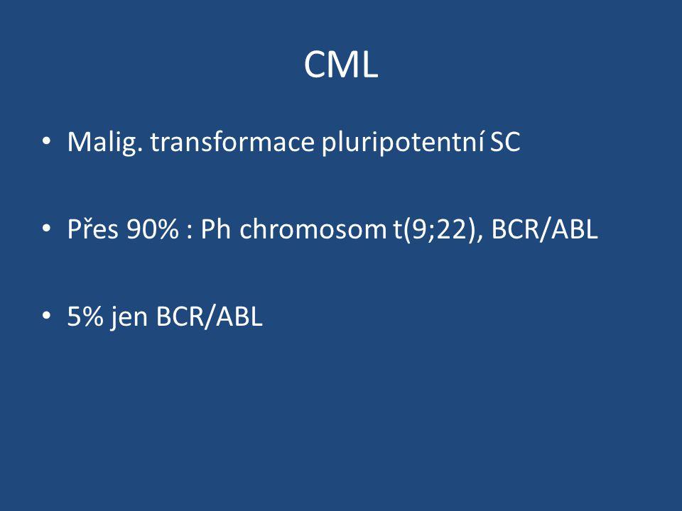 CML Malig. transformace pluripotentní SC