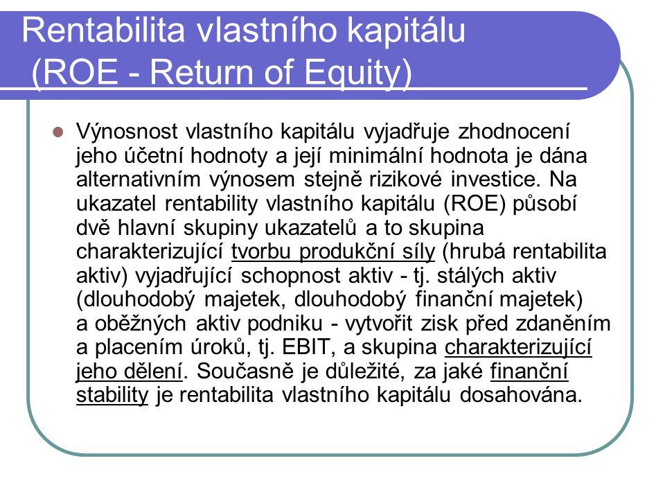 Rentabilita vlastního kapitálu (ROE - Return of Equity)