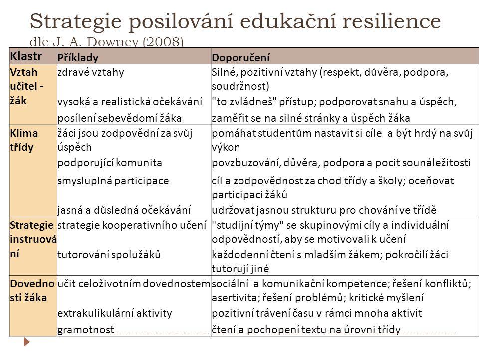 Strategie posilování edukační resilience dle J. A. Downey (2008)