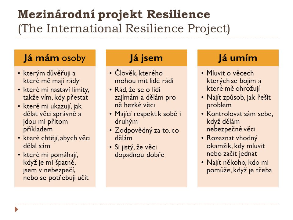 Mezinárodní projekt Resilience (The International Resilience Project)