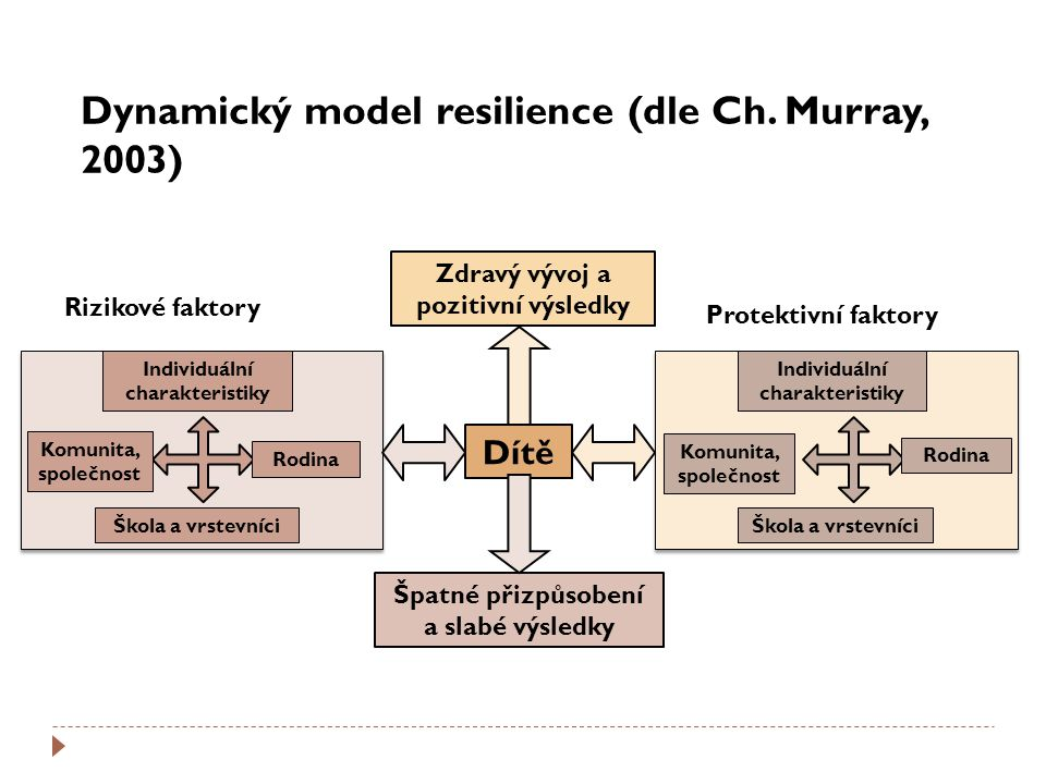Dynamický model resilience (dle Ch. Murray, 2003)