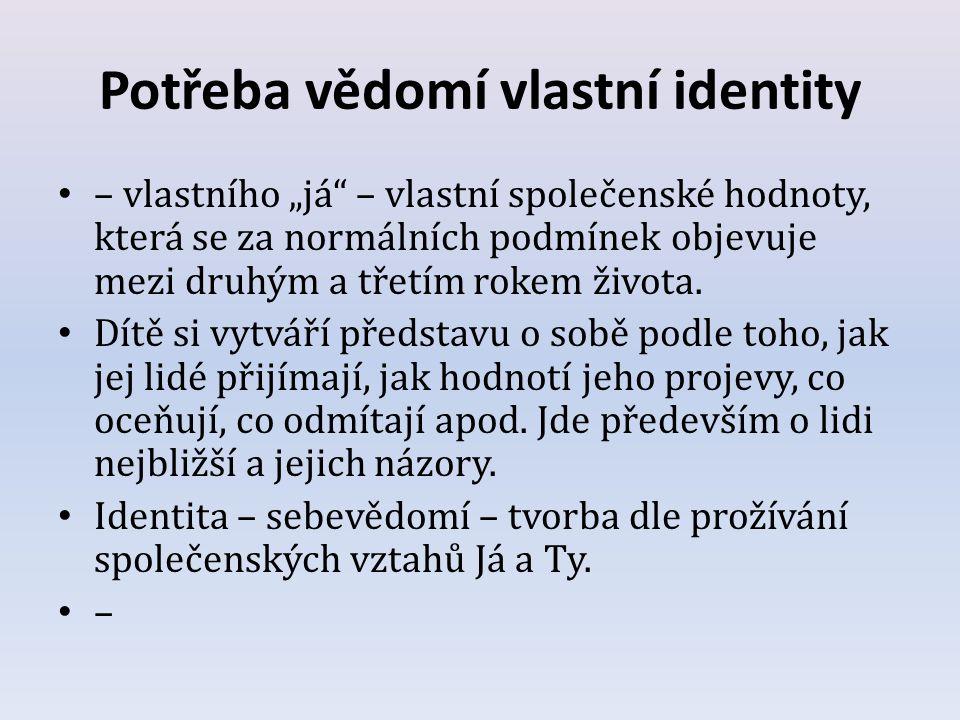 Potřeba vědomí vlastní identity
