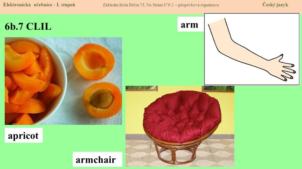 6b.7 CLIL arm apricot armchair