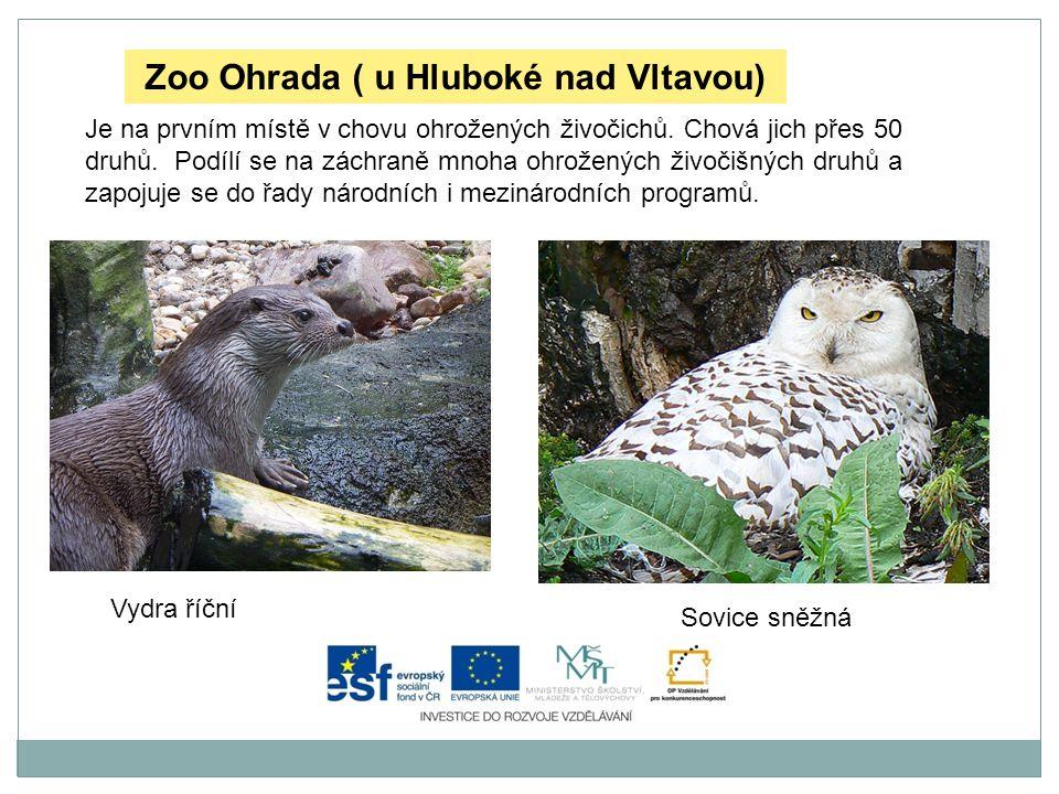 Zoo Ohrada ( u Hluboké nad Vltavou)