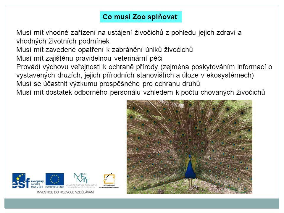 Co musí Zoo splňovat: Musí mít vhodné zařízení na ustájení živočichů z pohledu jejich zdraví a vhodných životních podmínek.