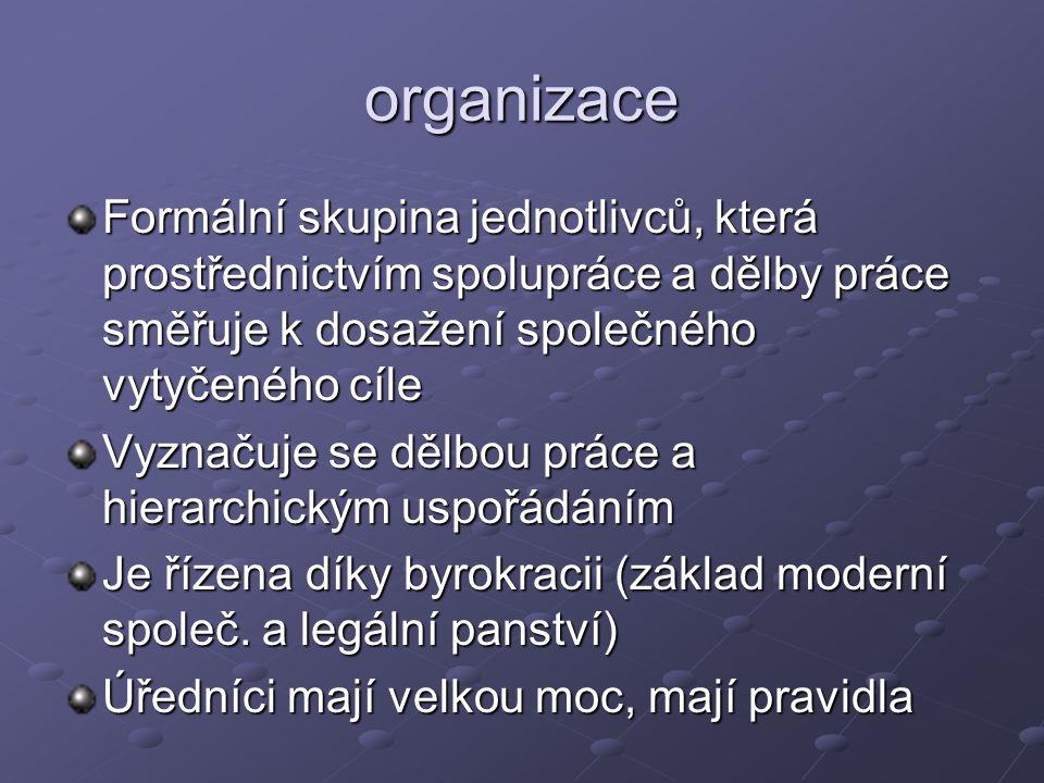 organizace Formální skupina jednotlivců, která prostřednictvím spolupráce a dělby práce směřuje k dosažení společného vytyčeného cíle.