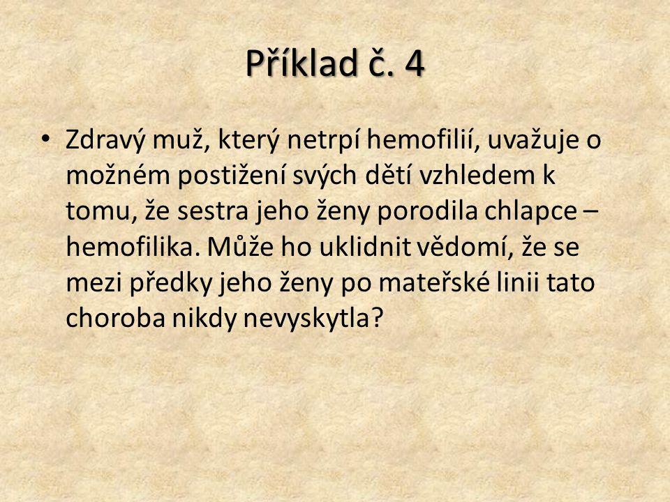 Příklad č. 4
