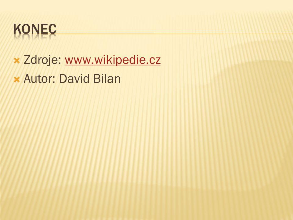 Konec Zdroje: www.wikipedie.cz Autor: David Bilan